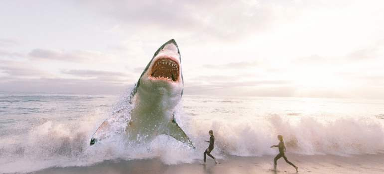 vídeo de un tiburón atacando a un marinero