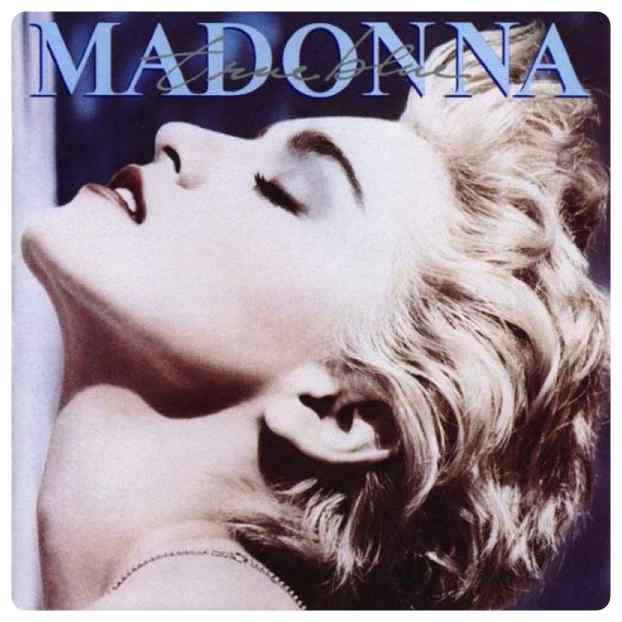 perro imita a madonna 12 - El perro que imita las portadas de Madonna.