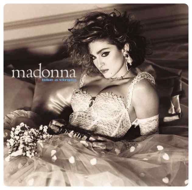perro imita a madonna 16 - El perro que imita las portadas de Madonna.