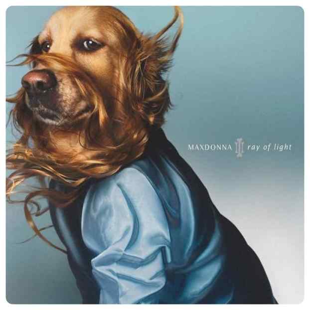 Este perro imita las portadas de Madonna