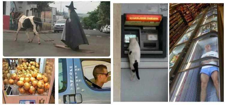 Las imágenes mas chistosas de la red. 1