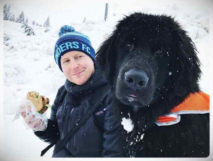 Increibles imágenes de perros de raza Terranova una de las mas grandes del mundo. 6