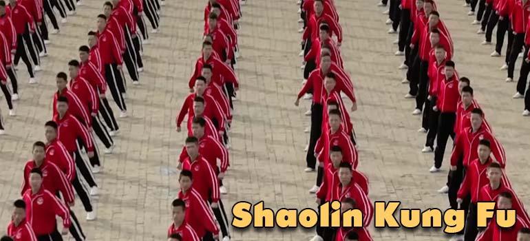 Entrenamiento de estudiantes de Shaolin Kung Fu visto desde un satélite. 3