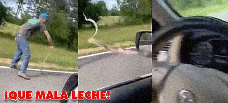 Lanza una serpiente al interior de un coche. 1