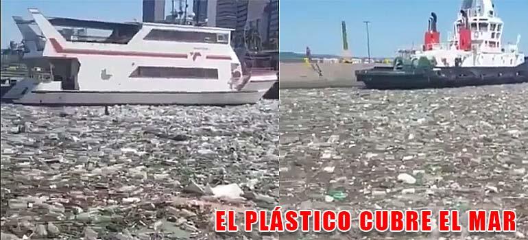 Toneladas de plásticos cubren el agua en este puerto. 2