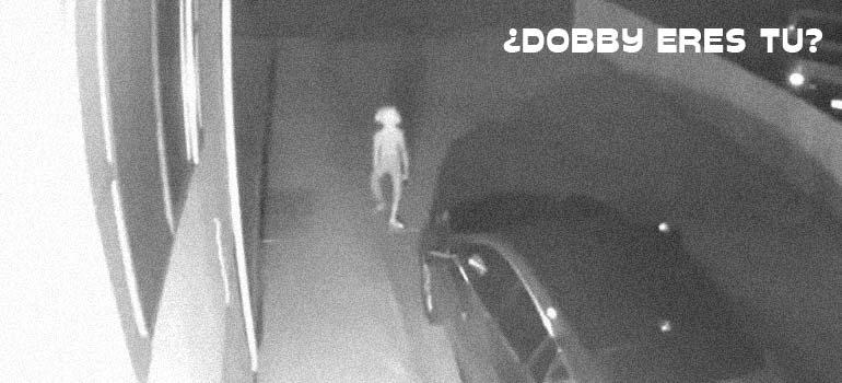 El vídeo de Dobby capturado por una cámara de seguridad. 6
