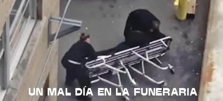 Trabajadoras de la funeraria con el muerto por los suelos. 4