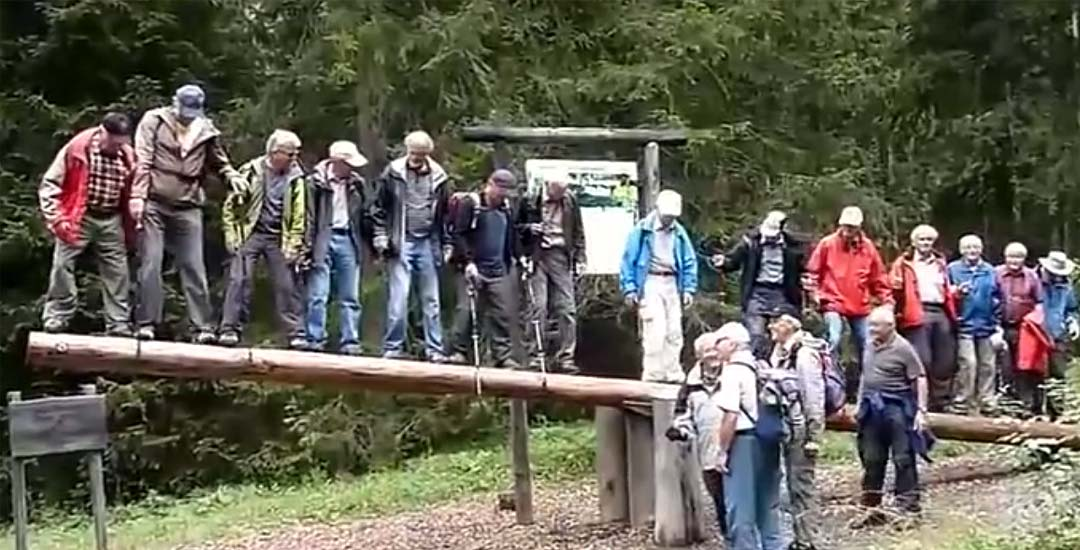 Grupo de ancianos heridos tras subirse a un balancín en una excursión. 1