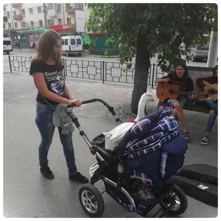 17 Sorprendentes imágenes de Rusia y de Rusos. 10
