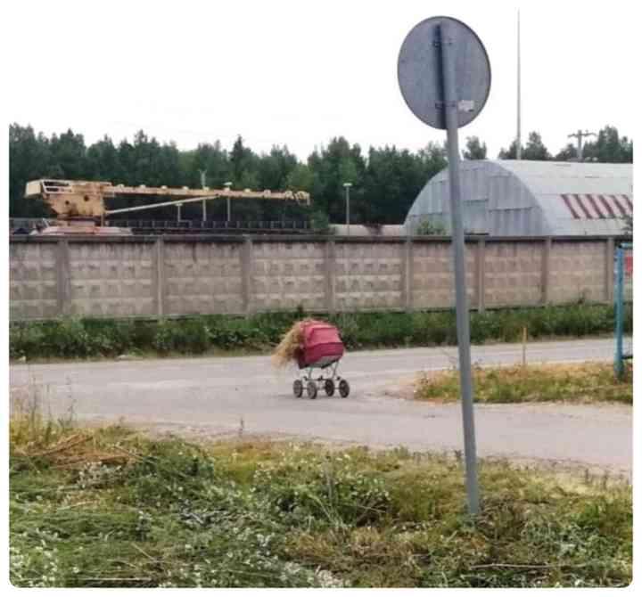 17 Sorprendentes imágenes de Rusia y de Rusos. 18