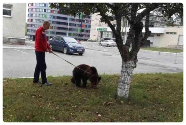 17 Sorprendentes imágenes de Rusia y de Rusos. 3
