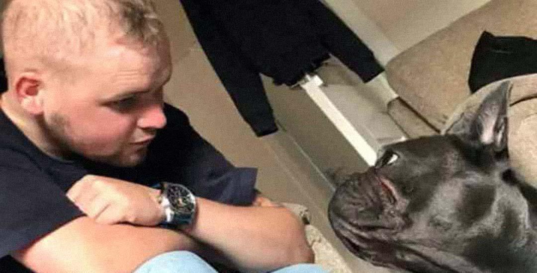 Un perro muere 15 minutos después de que lo haga su dueño por cáncer. 7