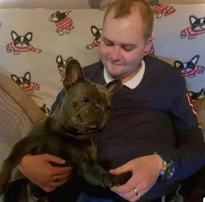 Un perro muere 15 minutos después de que lo haga su dueño por cáncer. 4