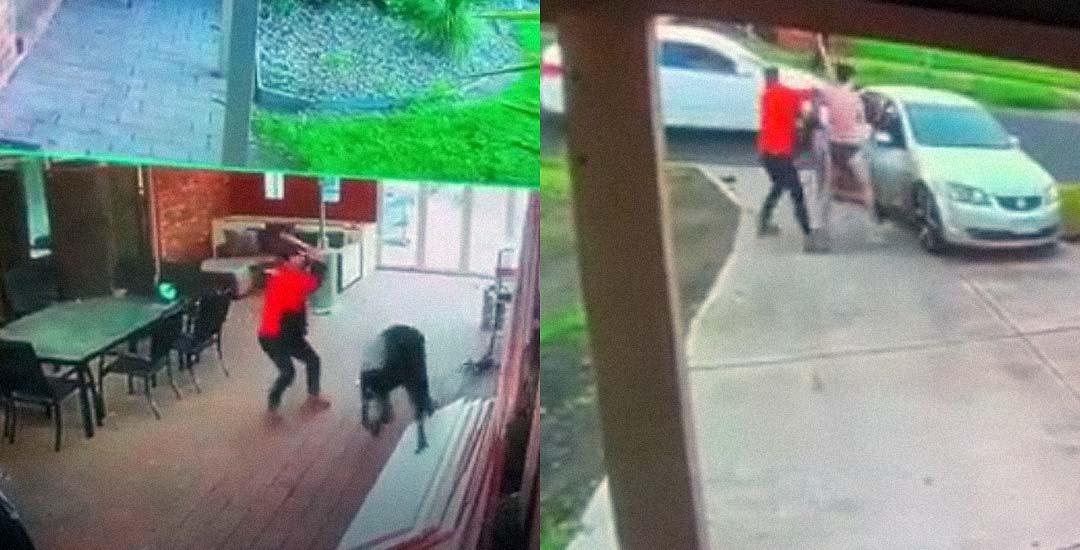 Dos ladrones son apaleados al intentar robar en una casa. Vídeo. 5