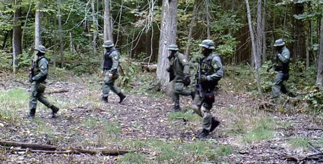 Deja una cámara para grabar animales y descubre a los SWAT en el bosque. 2
