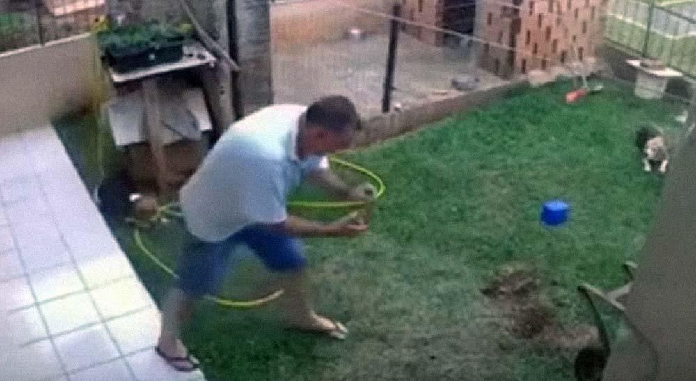 Intenta destruir un hormiguero y destroza el jardín 5