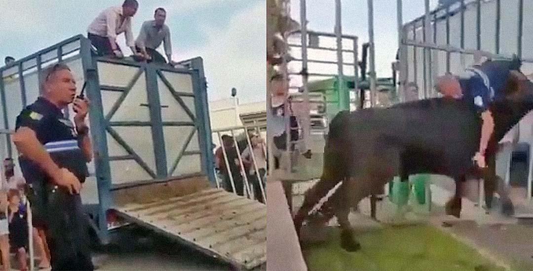 El toro del encierro embiste a un policía 7