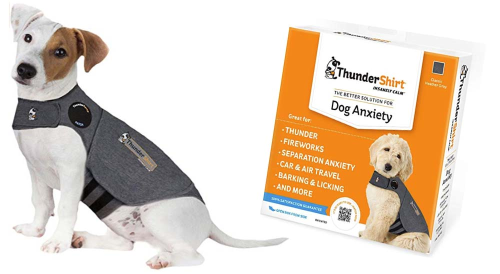 8 Compras imprescindibles en Amazon si tienes un perro 2