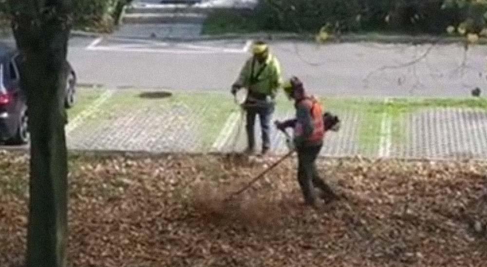 Jardineros sin experiencia y sus divertidos fails 5