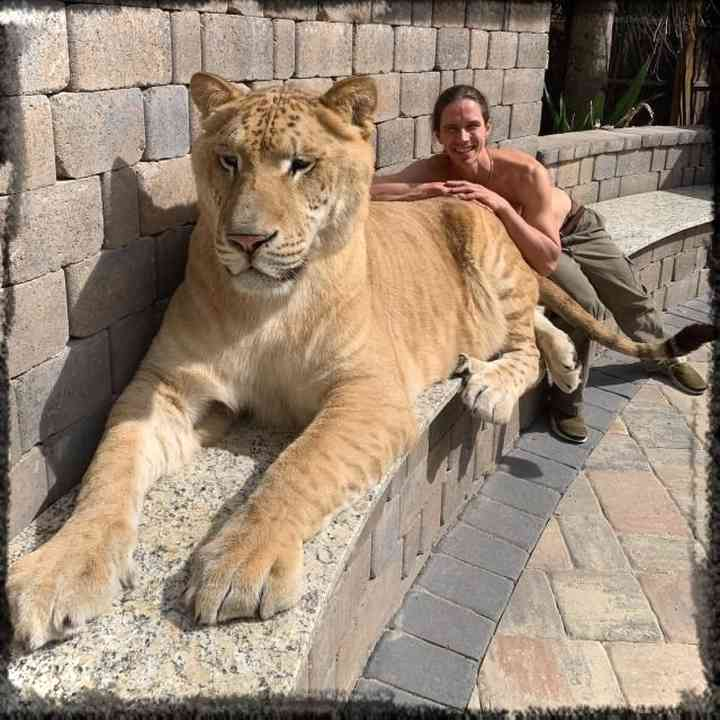 10 de los animales más grandes del mundo según el libro guinness de los récords 3