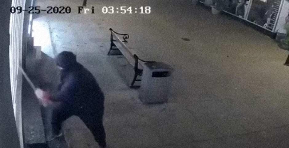 Te vas a sorprender al ver lo que roba este ladrón 4