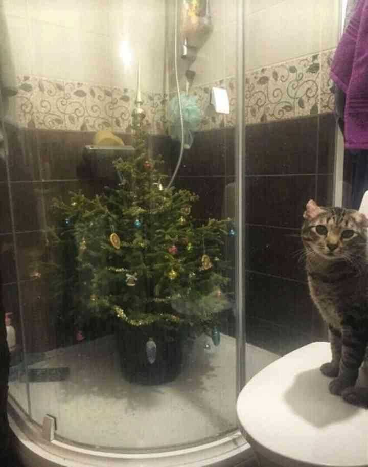 10 Ideas para proteger el Árbol de Navidad de tus mascotas 3