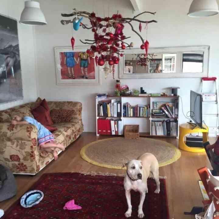 10 Ideas para proteger el Árbol de Navidad de tus mascotas 4