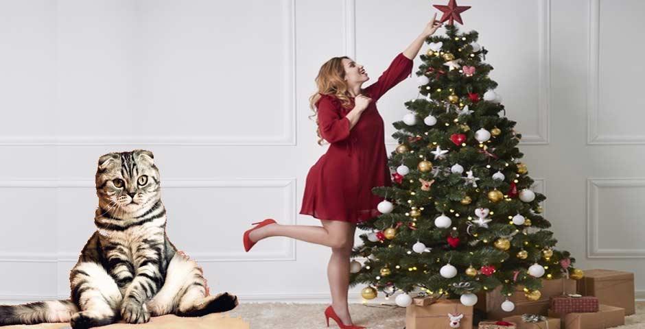 10 Ideas para proteger el Árbol de Navidad de tus mascotas 2