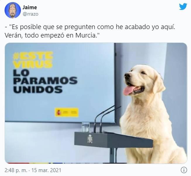 Los memes de la candidatura de Pablo Iglesias por Madrid 7