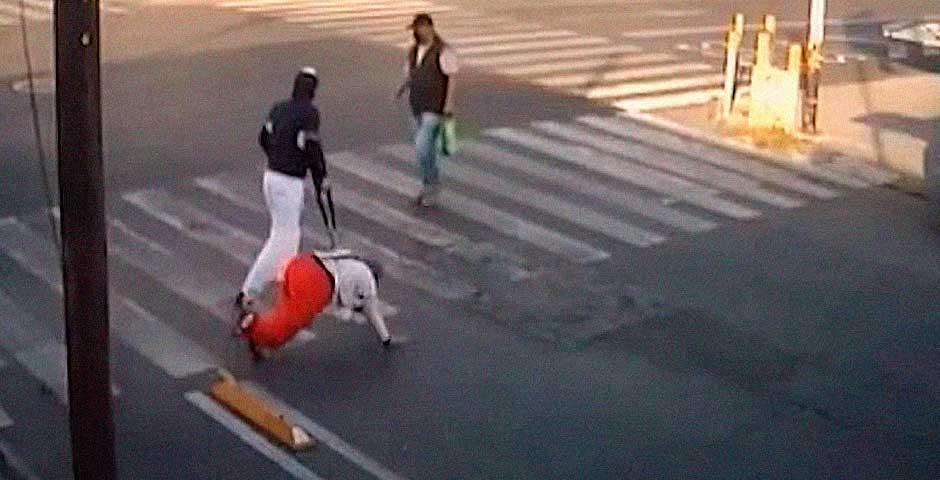 Se viraliza un paso de peatones donde todo el mundo se cae 3