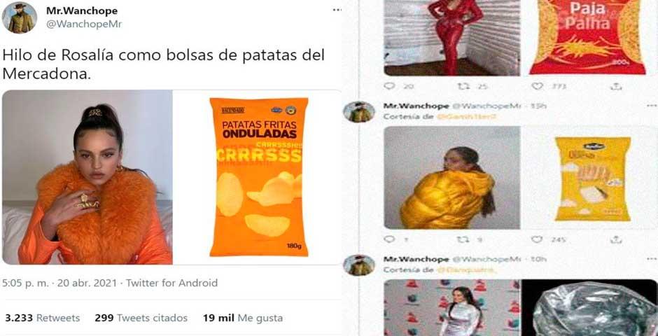 Rosalía comparada con las patatas fritas del Mercadona 7