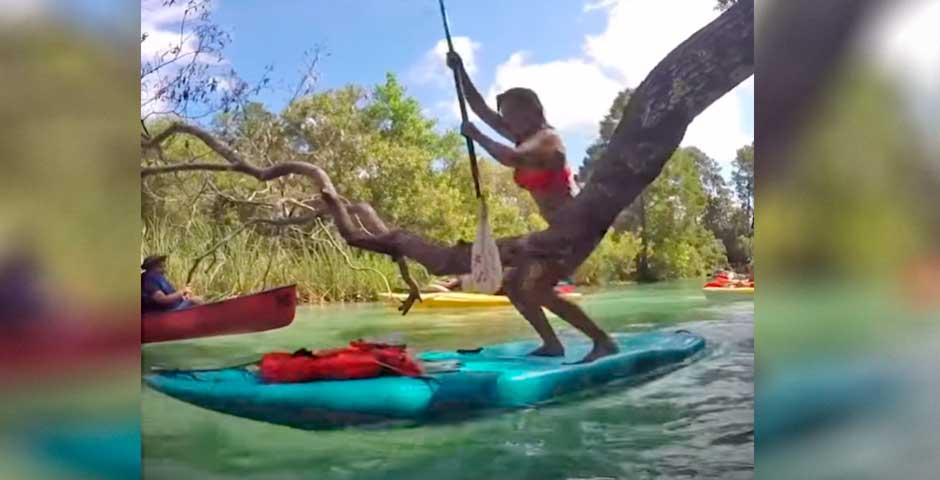 Vídeos divertidos haciendo paddle surf 3