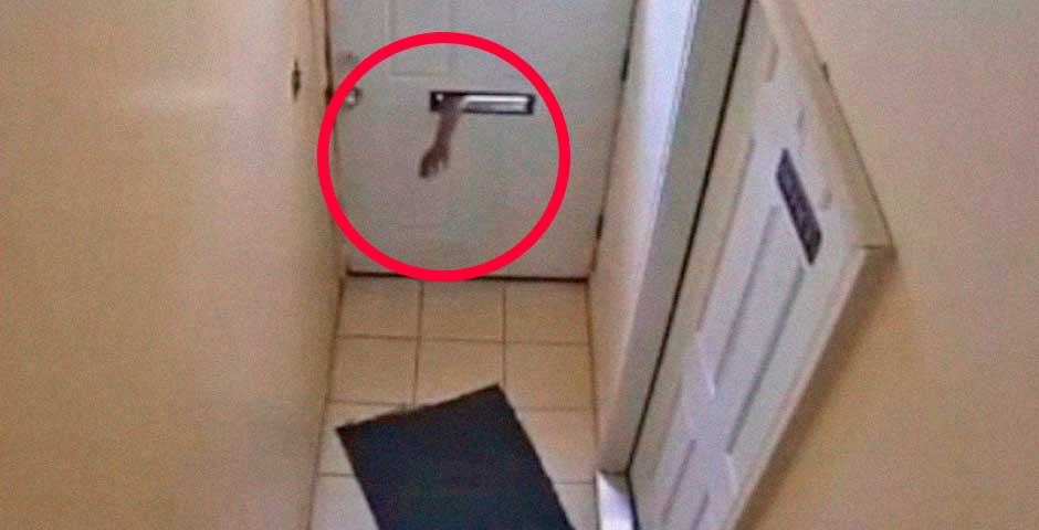 Ladrón intenta entrar en una casa, ¿Qué es lo que va a ocurrir? 8