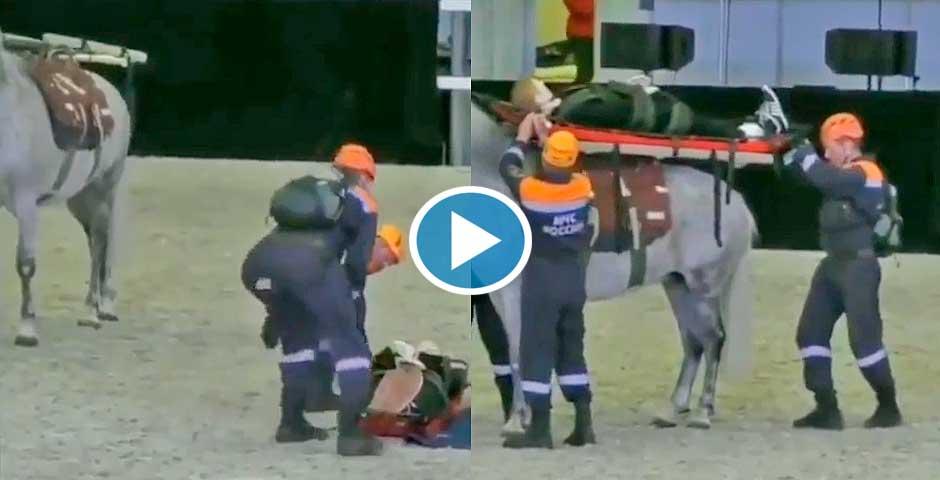 Usaremos un caballo como ambulancia, ¿qué puede salir mal? 4